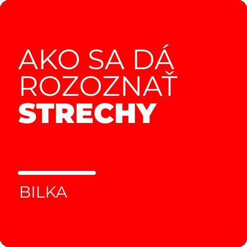 thumbnail-documentatie-bilka-sk-07
